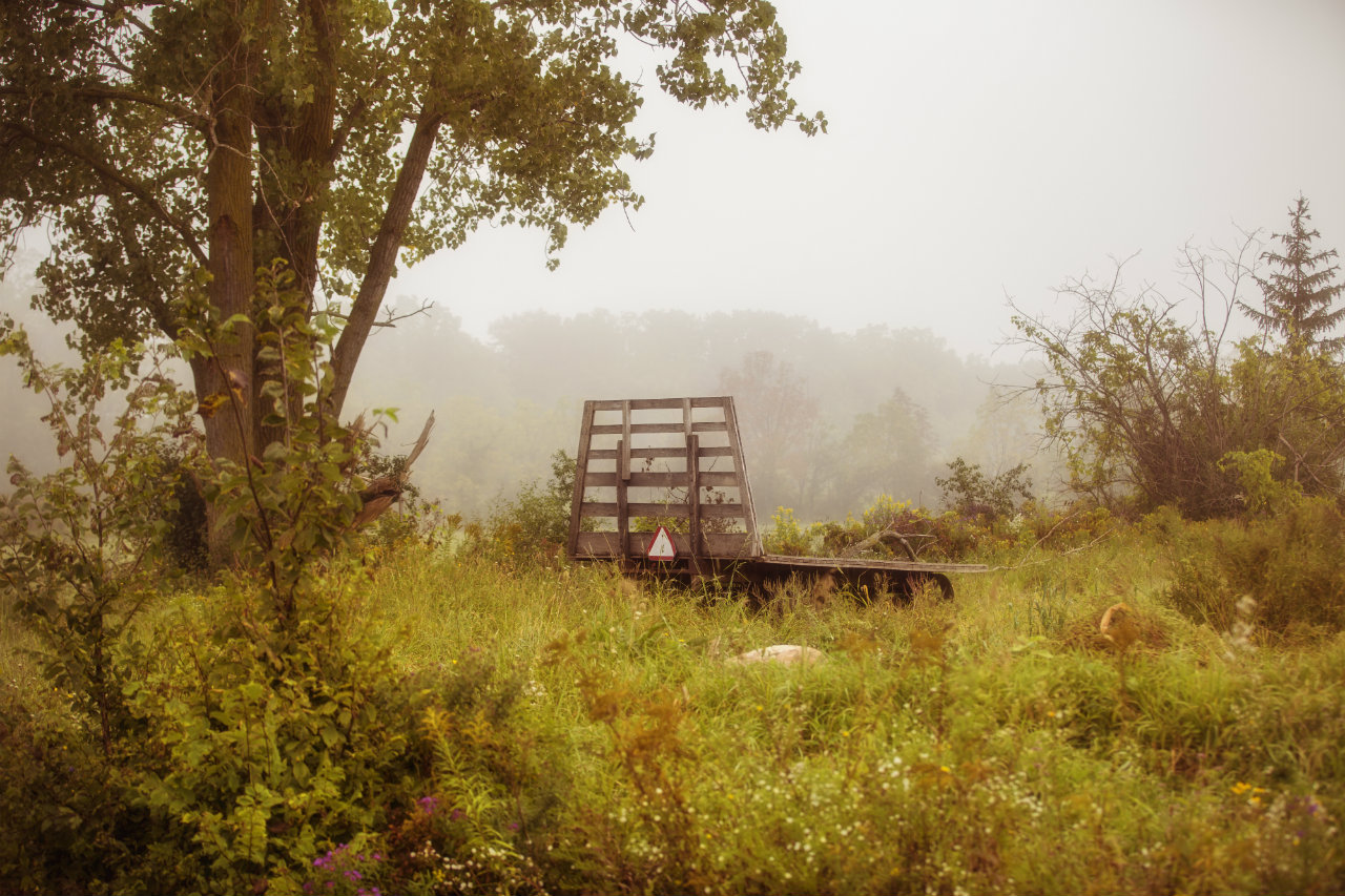 Foggy morning in the Finger Lakes (photo)